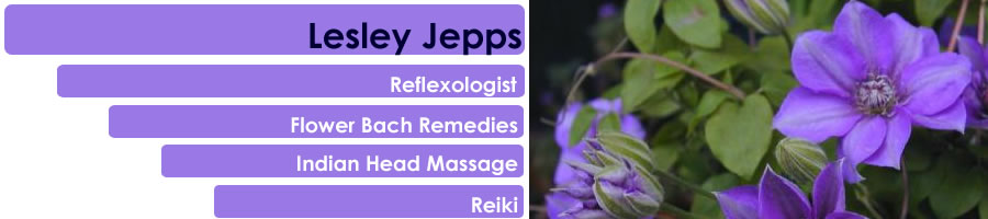 Lesley Jepps - East Sussex Reflexologist, Reiki, Indian Head Massage, Flower Bach Remedies